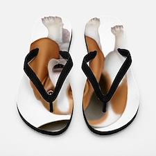 Friendly Basset Hound Dog Flip Flops