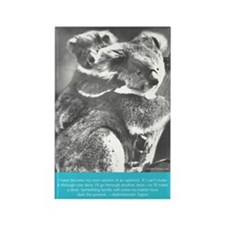 """Vintage Postcards"" Book Koala Rectangle Magnet"