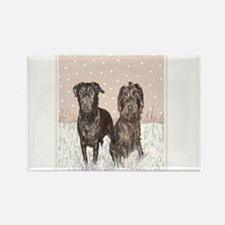 Patterdale Terrier Magnets