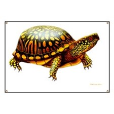 Colorful Eastern Box Turtle Banner