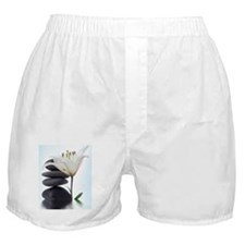 Zen River Rocks/Flower Boxer Shorts