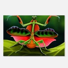 Tropical Praying Mantis o Postcards (Package of 8)