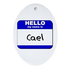 hello my name is cael  Oval Ornament
