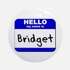 hello my name is bridget  Ornament (Round)