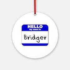 hello my name is bridger  Ornament (Round)