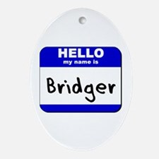 hello my name is bridger  Oval Ornament