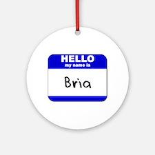 hello my name is bria  Ornament (Round)