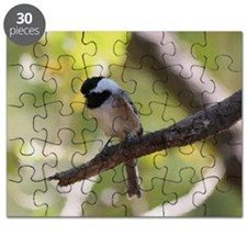 A Chickadee Painting Puzzle
