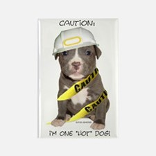 Pit Bull Terrier Puppy Rectangle Magnet