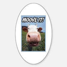 Moove It Cow Oval Decal