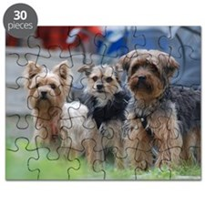 Morkie, Chorkie and Yorkie Puzzle