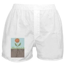 Growing Flower Boxer Shorts