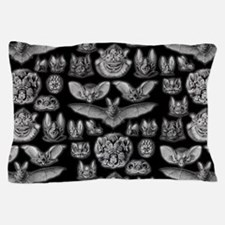 Vintage Bat Illustrations Pillow Case