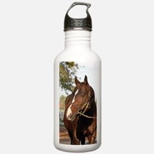 A.P. INDY Water Bottle