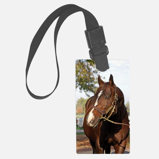 A.P. INDY Luggage Tag