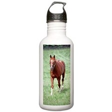 CHARISMATIC Water Bottle