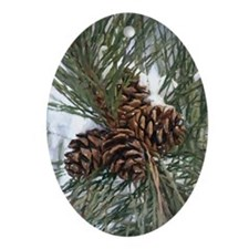 Pinecones In Snow Oval Ornament