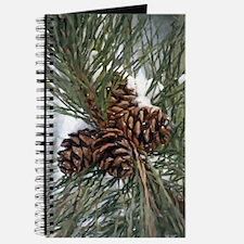 Pinecones In Snow Journal