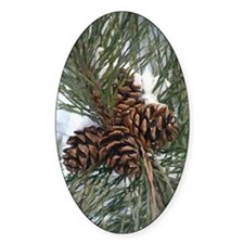 Pinecones In Snow Decal