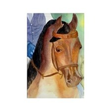 Arabian Saddleseat Horse Rectangle Magnet