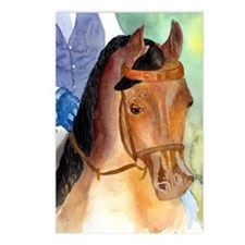 Arabian Saddleseat Horse Postcards (Package of 8)