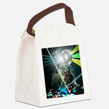Howling Disco Wolves Hipster Shir Canvas Lunch Bag