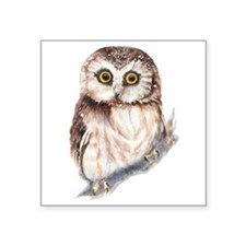 Cute Little Watercolor Saw Whet Owl Bird Nature Ar