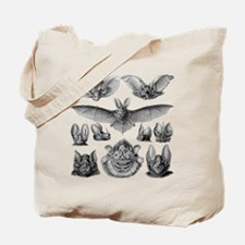 Vintage Bat Illustrations Tote Bag