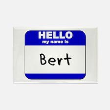 hello my name is bert Rectangle Magnet