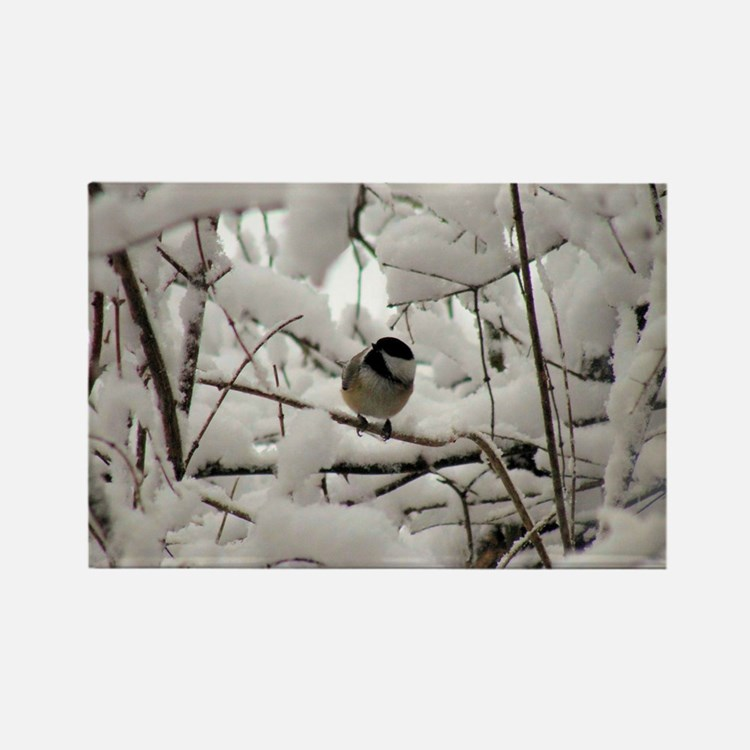 Chickadee Haven Rectangle Magnet