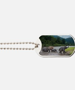 Traveling Family Dog Tags