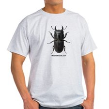 Stag Beetle - T-Shirt