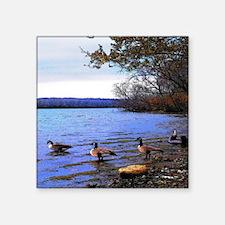 "Autumn Lake Square Sticker 3"" x 3"""
