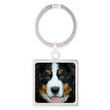 Bernese Mountain Dog Puppy 2 Square Keychain