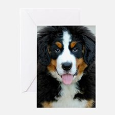 Bernese Mountain Dog Puppy 3 Greeting Card