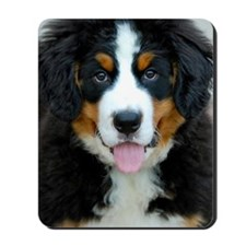 Bernese Mountain Dog Puppy 3 Mousepad
