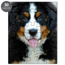 Bernese Mountain Dog Puppy 3 Puzzle