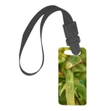 mantis Luggage Tag