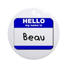 hello my name is beau  Ornament (Round)