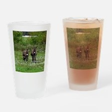 Two Miniature Donkeys (2) Drinking Glass