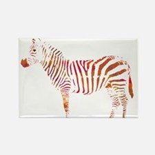 The Colorful Zebra Magnets