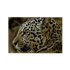 Jaguar Wild Animal Rectangle Magnet