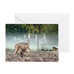 Mother Deer Greeting Card