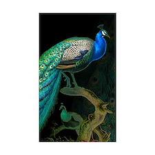 Vintage Peacock Decal
