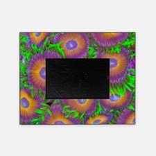 Zoanthid colony Picture Frame