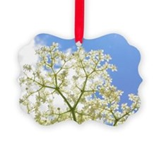 Elderflower Sky Ornament