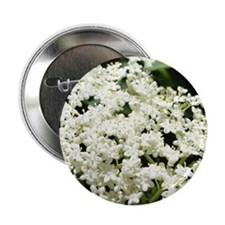 "Elderflowers 2.25"" Button"