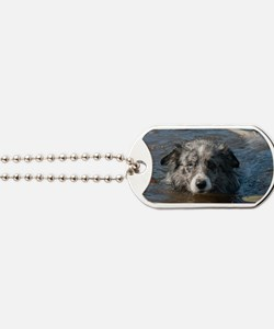 Blue Merl Dog Tags
