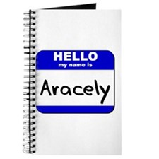hello my name is aracely Journal