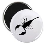 Giant Scorpion Magnet